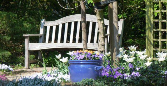 garden-141404_1280